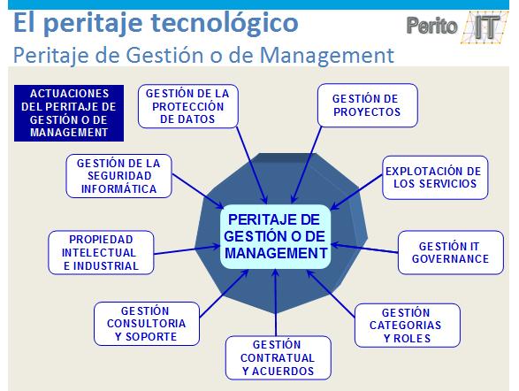 Desempeños peritaje de Gestion o Management