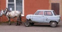 caballo tirando de coche