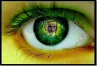 ojo-reflejo_thumb[3]