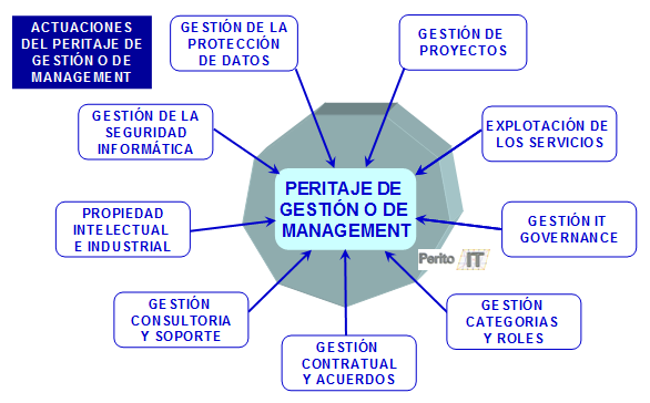 Peritaje de Gestion y Management